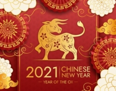 BEST WISHES FOR THE NEW CHINESE YEARTHE YEAR OF THE OX!